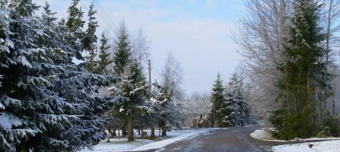 Kai už lango žiema